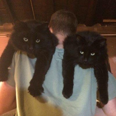 Les jumeaux Koda et Baloo