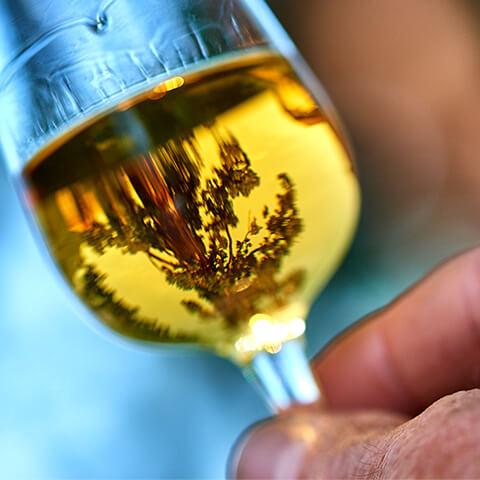Rubrique visites de la Distillerie du Vercors.